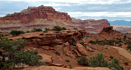 Turn in any direction in any part of Capitol Reef National Park for a beautiful view.